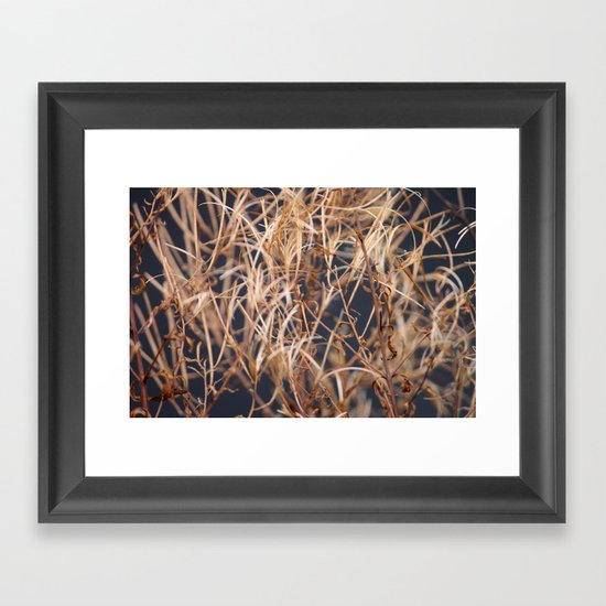 Dry Grass Framed Art Print