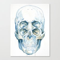 the 4i skull Canvas Print