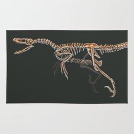 Velociraptor Mongoliensis Skeletal Study (No Labels) Rug