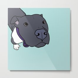 Faith The Resilient Pit Bull Metal Print