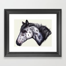 Appaloosa horse Framed Art Print
