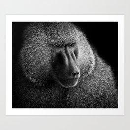 Baboon I Art Print