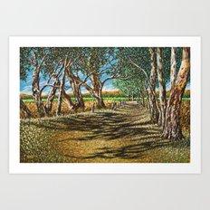 Shaded Path, Nuriootpa Art Print