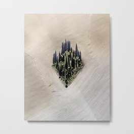 Cipressi toscani Metal Print