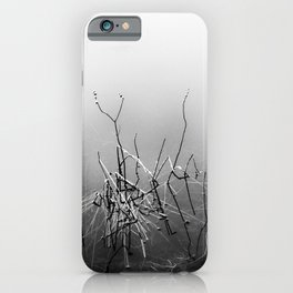 Echoes Of Reeds 4 iPhone Case