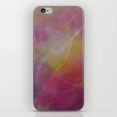 Polished iPhone & iPod Skin