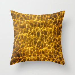 Seafloor with reflecting light Throw Pillow