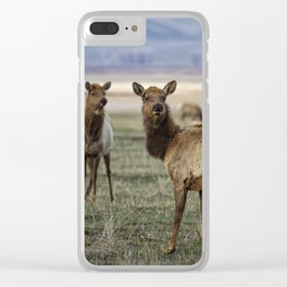 Alert on the Home Front Clear iPhone Case