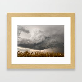 Marshmallow - Storm Cloud Over Golden Wheat in Kansas Framed Art Print