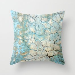 Corroded Beauty Throw Pillow