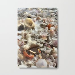 Tideline Beach Shells Metal Print