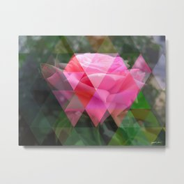 Pink Roses in Anzures 6 Art Triangles 1 Metal Print