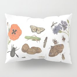 Common place miracles -Natural History Part II Pillow Sham