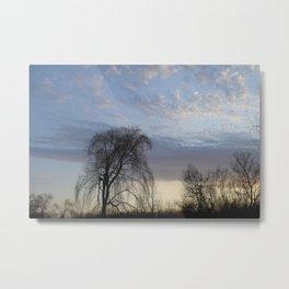 Willow on the Horizon Metal Print
