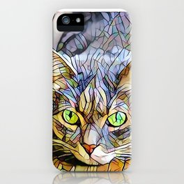 The TABBY II from our FUNK YOUR FELINE line iPhone Case
