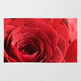 A Rose - The Flower Collection Rug