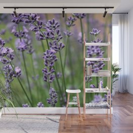 Lavender Plant Wall Mural