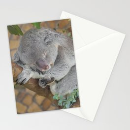 Sleeping Koala Stationery Cards