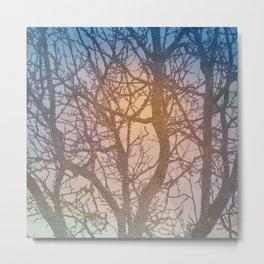 Tree Branches Metal Print