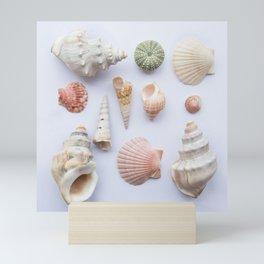 Shell collection Mini Art Print