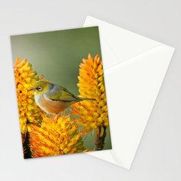 Silvereye Laze Stationery Cards