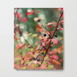 Red and Teal Leaves and Berries in Fall Colors Metal Print