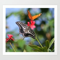 BUTTERFLY FARM DUO Art Print