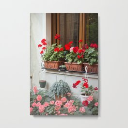 Windowsill Garden, Bellagio Metal Print