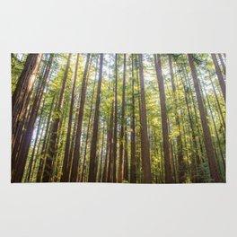 Redwood Trees Rug