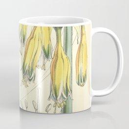 4952 Coffee Mug