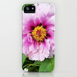 Rose and mauve peony with a heart of gold iPhone Case