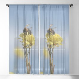 Honey bee on a wildflower Sheer Curtain