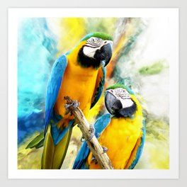Macaw friends Art Print