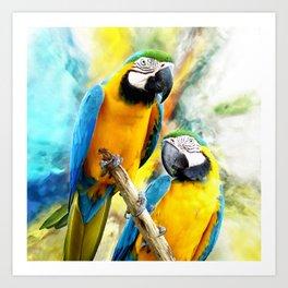 Macaw friends Art Print