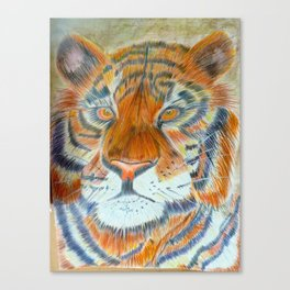 Terence Tiger Canvas Print