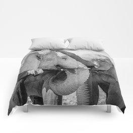B&W Elephant Love 2 Comforters
