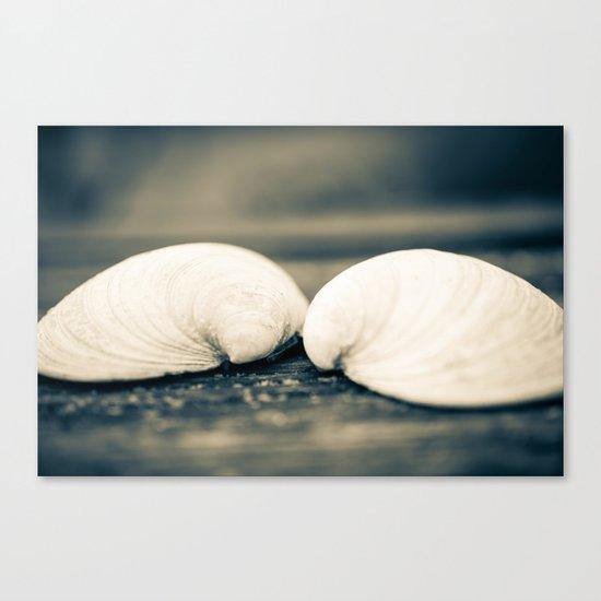 Sea Shell Love Canvas Print
