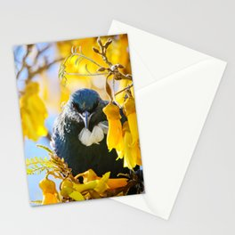 Tui Outstare Stationery Cards