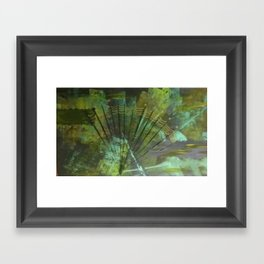 Quiet of the Deep Framed Art Print