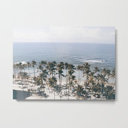 Palm Trees 19 Metal Print