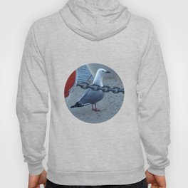 The Cape Town gull Hoody