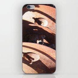 Disc Plough iPhone Skin