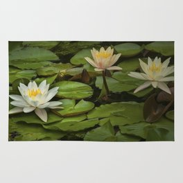 Lily Pads and Blossoms on a Michigan Pond Rug