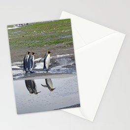 More King Penguin Reflections Stationery Cards