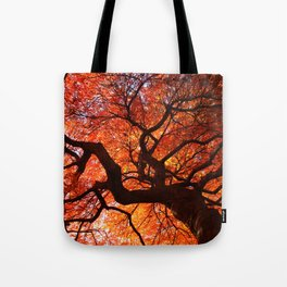 Ephemeral - Fall Maple Leaves, Nature Photography Tote Bag