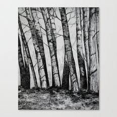 The Row  Canvas Print