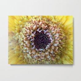 Macro Yellow Flower Center Metal Print