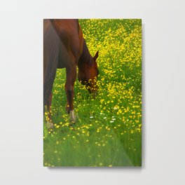 Enjoying The Wildflowers Metal Print