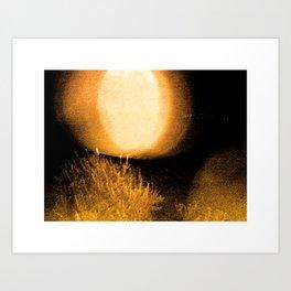 Dark Night Amber Art Print