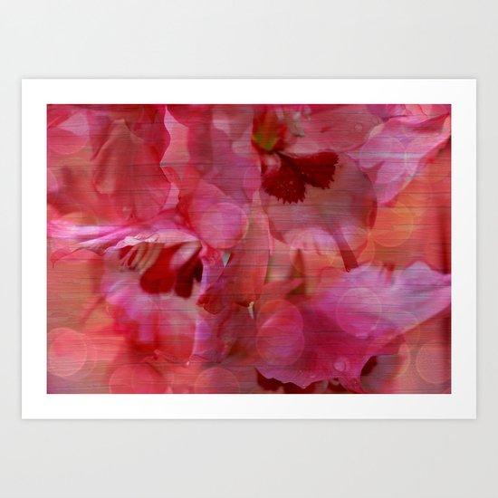 Vintage Pink Gladiola Abstract Art Print